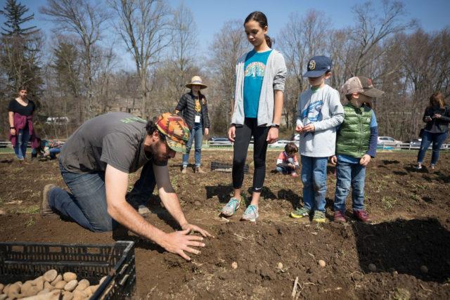 Jason Grauer teaching kids to plant potatoes