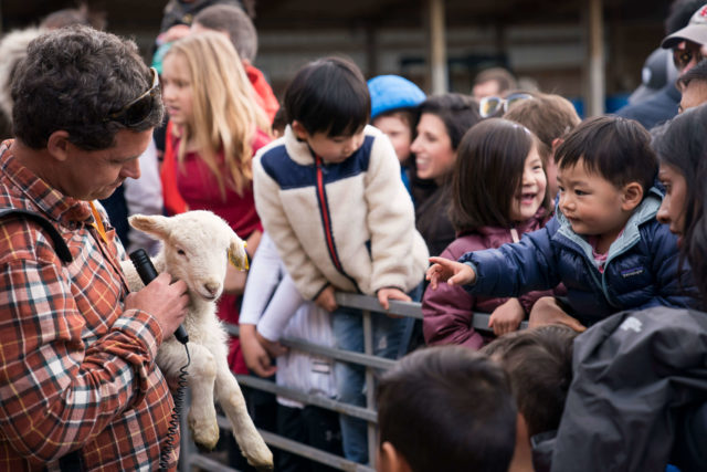 farmer holding lamb and talking with visitors